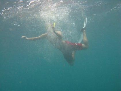 plongee-grande-barriere-corail-5