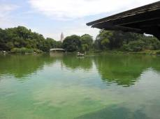 Central-Park-11