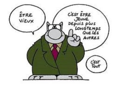 Merci, le chat. © Le Chat